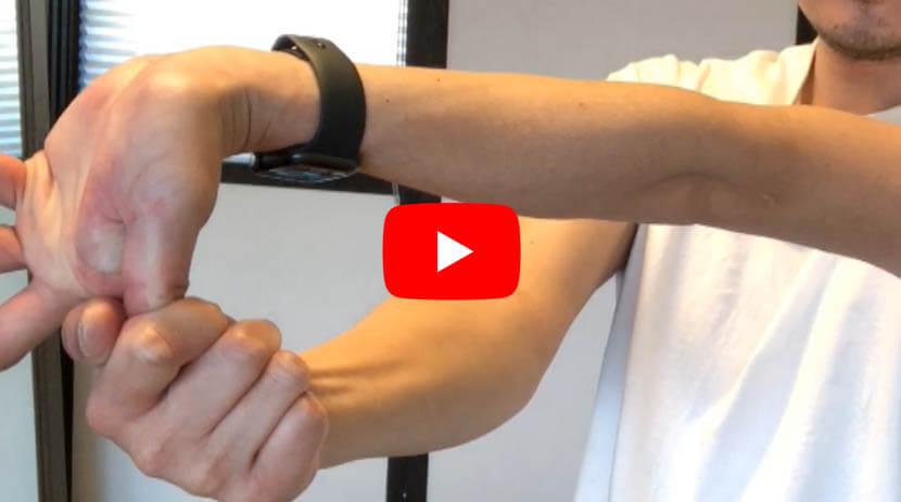 (#78)方形回内筋、円回内筋、長掌筋、橈側手根屈筋に効くストレッチ(1)