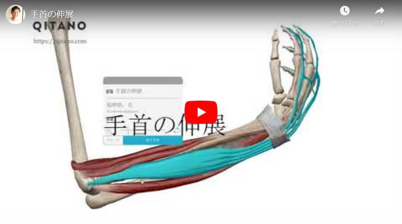 手首の伸展