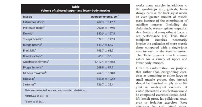 健康な人間の骨盤と下肢の筋肉の筋肉量に関する参照データ:invivo磁気共鳴画像法の実現可能性調査